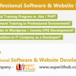 Advanced Professional Software & Website Development